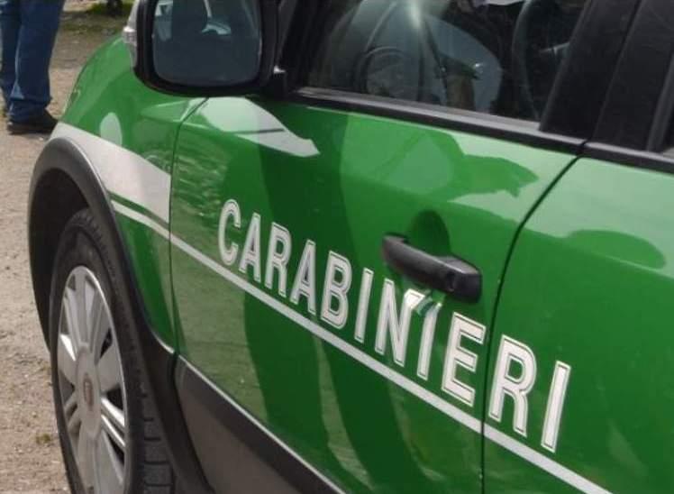 CAPRIGLIA IRPINA – GESTIONE ILLECITA RIFIUTI: DENUNCIATO PROPRIETARIO DI FONDO AGRICOLO